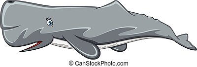 Dibujos de ballenas esperma