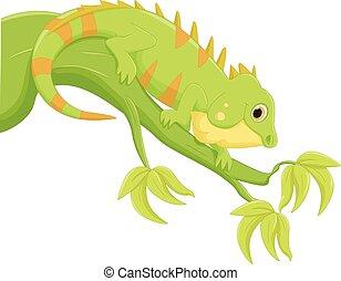 Dibujos de Iguana