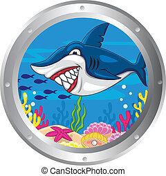 Dibujos de tiburón con marco de babor