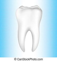 dientes sanos