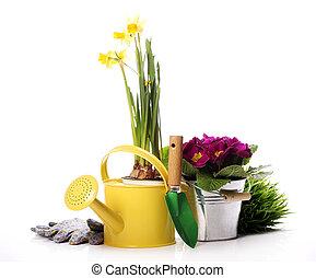 diferente, llenar, jardinería
