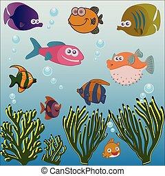 Diferentes peces bajo el mar