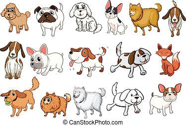 Diferentes razas de perros