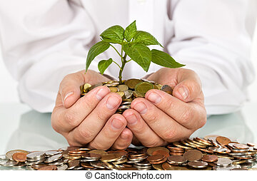 dinero, bueno, concepto, inversiones, elaboración