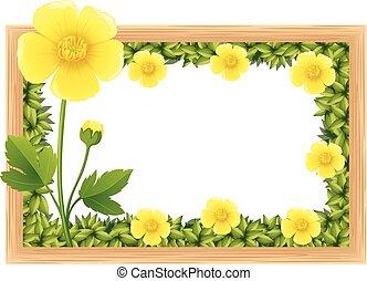 diseño, amarillo, marco, flores, ranúnculo
