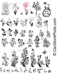 Diseños florales de decoración