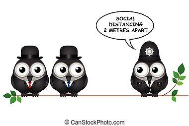 distancing, cómico, social