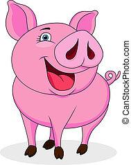divertido, caricatura, cerdo