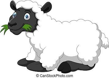 divertido, sheep, caricatura, sonrisa