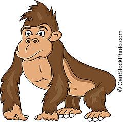 Divertidos de gorilas