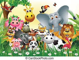 Divertidos dibujos animados de animales