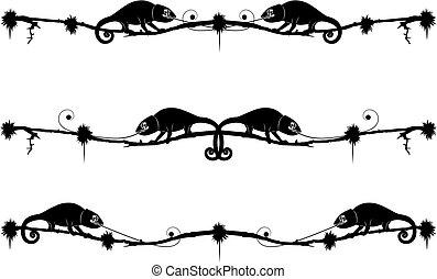Dividedores con camaleón