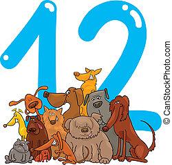 doce, 12, número, perros