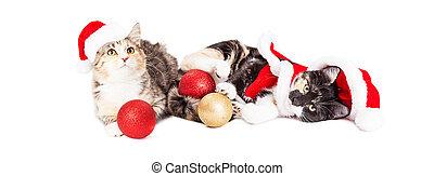 Dos alegres gatitos de Navidad