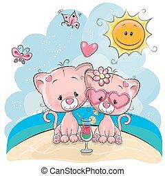 Dos gatitos en la playa