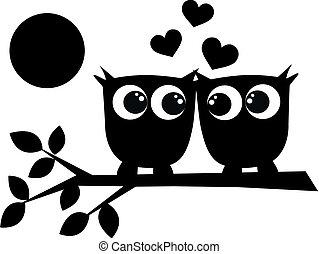 Dos lechuzas enamoradas