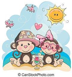 Dos monos en la playa