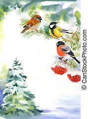Dos pájaros y lingotes en la nieve