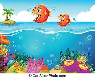 Dos pirañas aterradoras en el mar