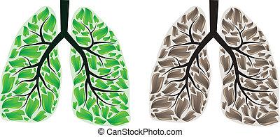 dos, pulmones