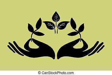 dos, ramitas, hojas, tenencia, composición, manos