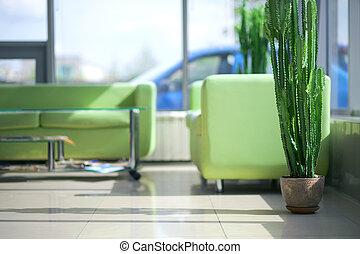 Dos sofás verdes y cómodos en el interior