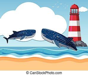 Dos tiburones ballena en el océano