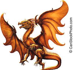 dragon., vector, medieval