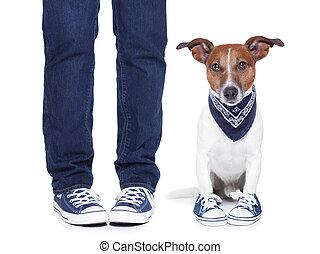Dueño de perros y perro
