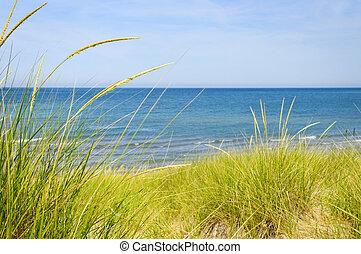 Dunas de arena en la playa