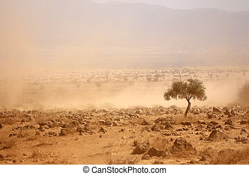 durante, llanuras, polvoriento, sequía