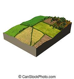 ecosistema, modelo, tierras labrantío, 3d