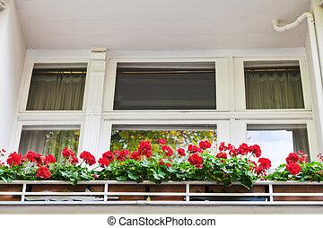 edificio, berlín, flores, rojo, balcón