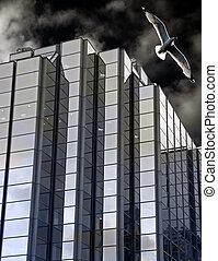 Edificio de oficinas corporativas y gaviotas
