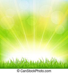 Edificio verde con hierba verde y soleado