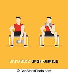 Ejercicios de bíceps. Rulo de concentración.
