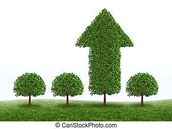 El éxito del crecimiento financiero
