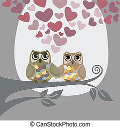 El amor está en el aire para dos lechuzas