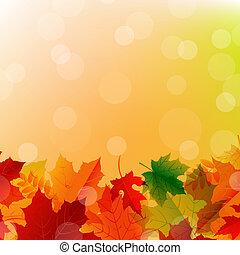 El arreglo de las hojas de otoño
