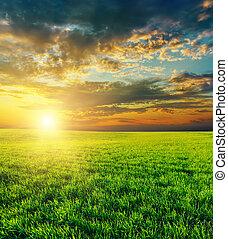 El atardecer sobre el campo verde agrícola