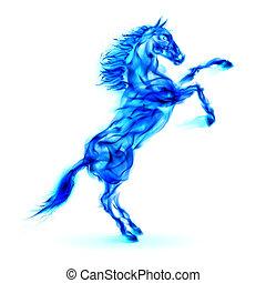 El caballo de fuego azul se levanta.