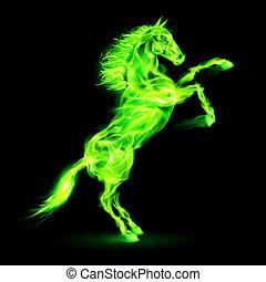 El caballo de fuego se levanta.