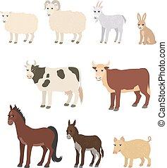 El cartón puso ovejas, burro, burro, caballo, conejo de cerdo
