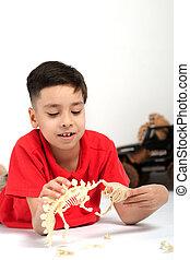 El chico el estudiante de la escuela la morena con una camiseta roja yace en el suelo y juega con esqueletos de juguete de dinosaurios.