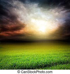 El cielo oscuro verde campo de hierba con luz solar