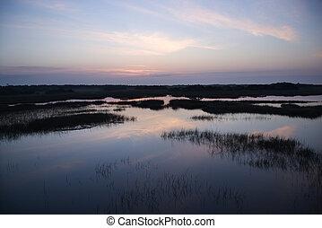 El cielo se refleja en el pantano.