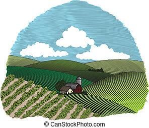 El color de la granja rural