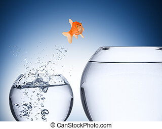 El concepto de aumento de peces