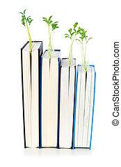El concepto de conocimiento con libros y semillas