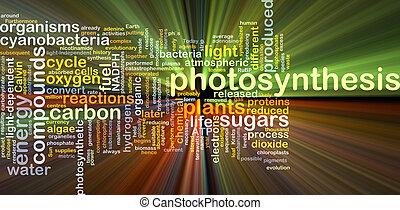El concepto de fondo de fotosíntesis brilla